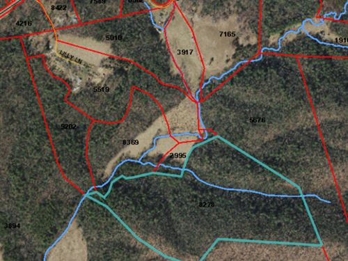 Land Lowgap Nc, Hunting : Lowgap : Surry County : North Carolina