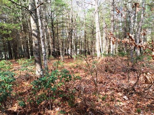 Wooded Building Lot Acreage Piney : Piney Creek : Alleghany County : North Carolina