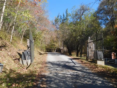 Nice Wooded Lot Common Access to : Piney Creek : Alleghany County : North Carolina