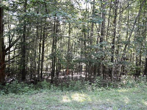 Lot Overlooking New River Alleghany : Piney Creek : Alleghany County : North Carolina