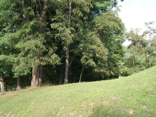 Building Lot River Country Estates : Piney Creek : Alleghany County : North Carolina