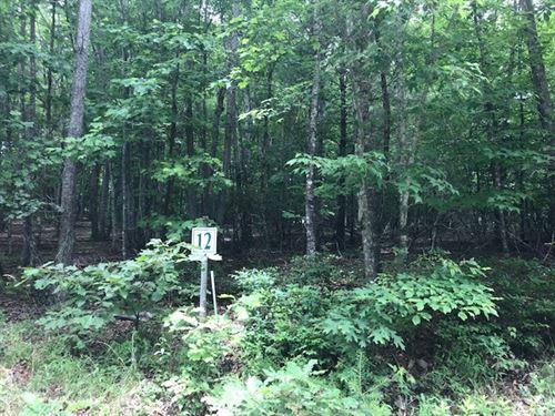 Laurel Mountain Estates, Sparta : Sparta : Alleghany County : North Carolina