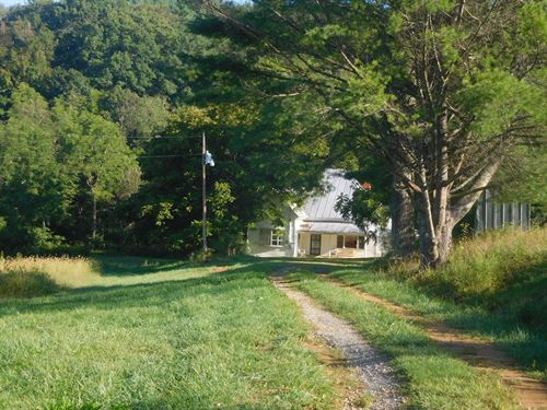 50 Acre Farm in Alleghany County : Sparta : Alleghany County : North Carolina