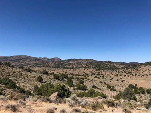 Off Grid Land NW Nevada Virginia : Virginia City : Storey County : Nevada