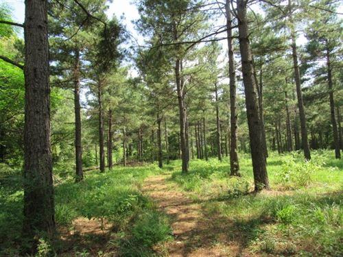 Wooded Acreage Broken Bow Lake : Broken Bow : McCurtain County : Oklahoma