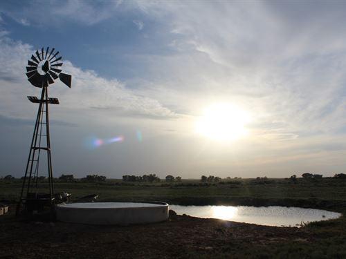 1280 Acres Land Buffalo Oklahoma : Buffalo : Harper County : Oklahoma