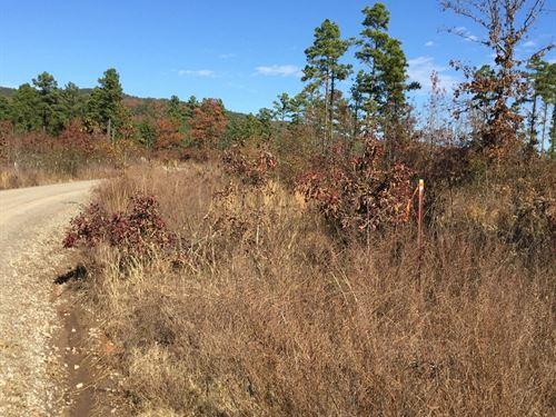 5 Acre Tract Mountain View : Clayton : Pushmataha County : Oklahoma