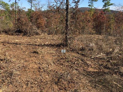 Mountain View Recreational Hunting : Clayton : Pushmataha County : Oklahoma