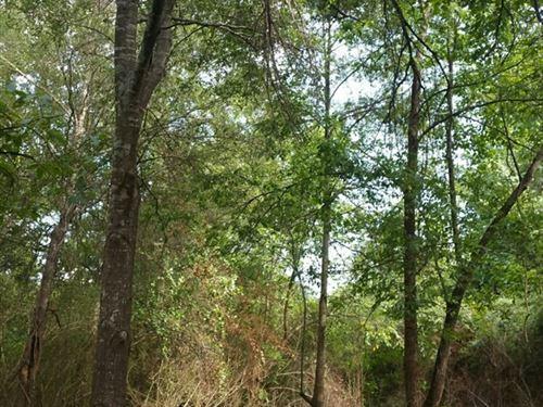 Residential Acreage in Idabel, OK : Idabel : McCurtain County : Oklahoma