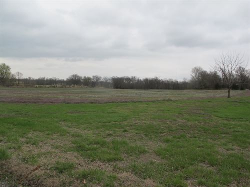 24 Acres in NE Oklahoma : Miami : Ottawa County : Oklahoma