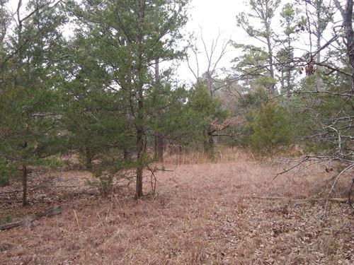 10 Acres Sustainable Mountain Land : Moyers : Pushmataha County : Oklahoma