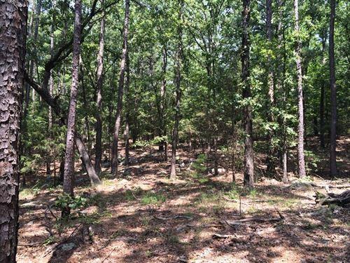 22.5 Acres Kiamichi Wilderness : Moyers : Pushmataha County : Oklahoma