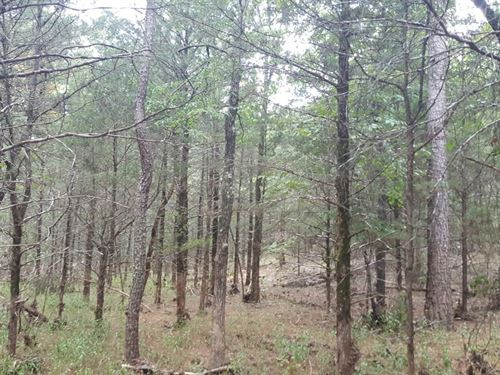Kiamichi Wilderness Recreational : Moyers : Pushmataha County : Oklahoma