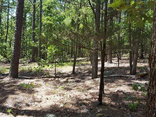 Kiamichi Wilderness Hunting Land : Moyers : Pushmataha County : Oklahoma