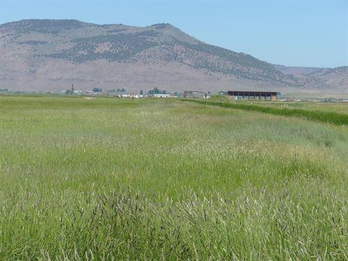 S&F Land & Cattle Co, Adel Oregon : Adel : Lake County : Oregon
