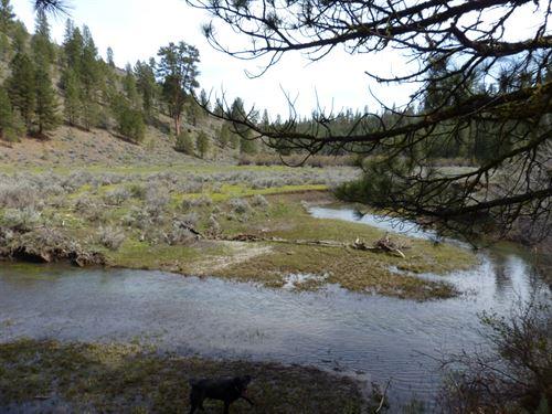 Burns, Yellowjacket Creek Northwest : Burns : Harney County : Oregon