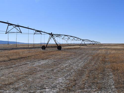 Pivot Irrigated Acreage For Sale : Burns : Harney County : Oregon