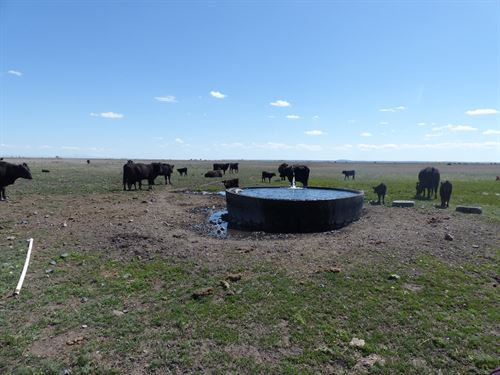 Cattle Pasture For Sale In Burns Or : Burns : Harney County : Oregon