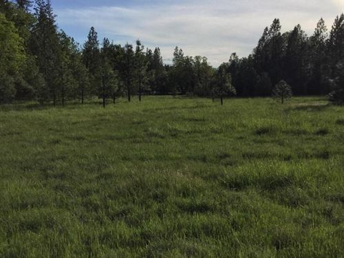 This 15.17 Acres Land, Endless : Cave Junction : Josephine County : Oregon