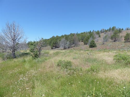Recreational Hunting Property : Frenchglen : Harney County : Oregon