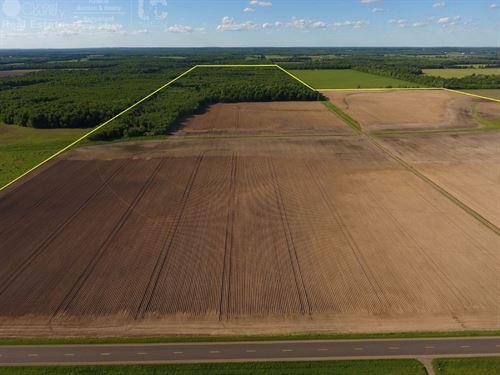 Extraordinary Investment Property : Antigo : Langlade County : Wisconsin