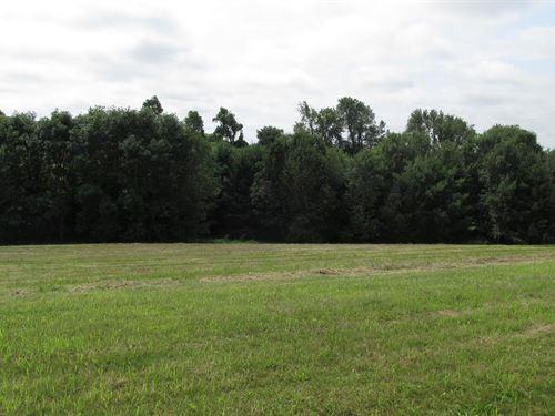 Lot 40.486 Acres Golf Course Access : Viroqua : Vernon County : Wisconsin