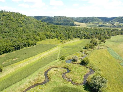 77.5 Acres Hunting Fishing Land WI : Viroqua : Vernon County : Wisconsin
