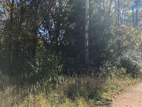 Wooded Lot For Sale, Waupaca WI : Waupaca : Wisconsin