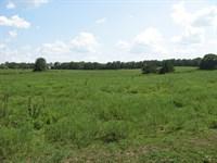 Acreage Saint James Mo, Land Mo : Saint James : Phelps County : Missouri