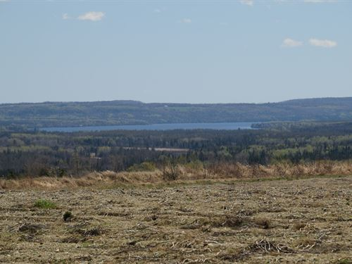 Maine Farmland in Cross Lake Twp : Cross Lake Twp : Aroostook County : Maine