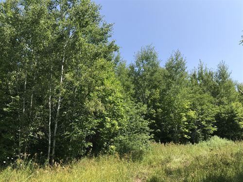 West Woodspur Road, 286.86 Ac : Ontonagon : Michigan