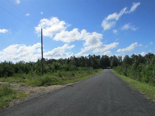 Three Branches Road Tract : Lugoff : Kershaw County : South Carolina