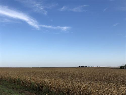Neitzel Cheyenne County Quarter : Saint Francis : Cheyenne County : Kansas