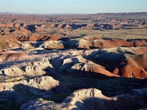 .19 Acres In Concho, AZ : Concho : Apache County : Arizona
