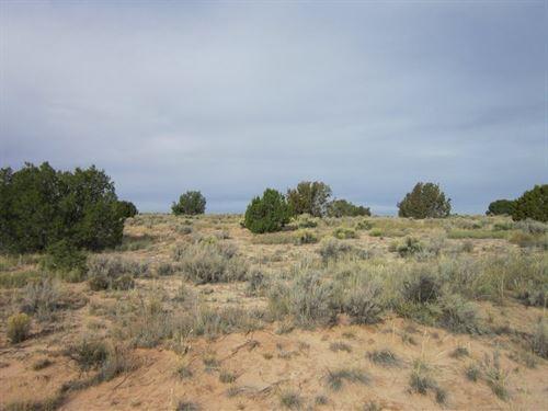.27 Acres In Concho, AZ : Concho : Apache County : Arizona