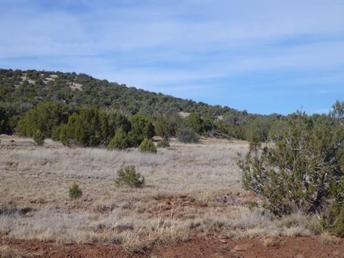 2.01 Acres In Concho, AZ : Concho : Apache County : Arizona