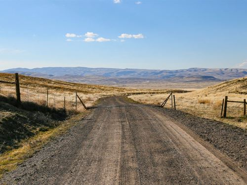 79.95 Acres In Eureka, NV : Eureka : Nevada