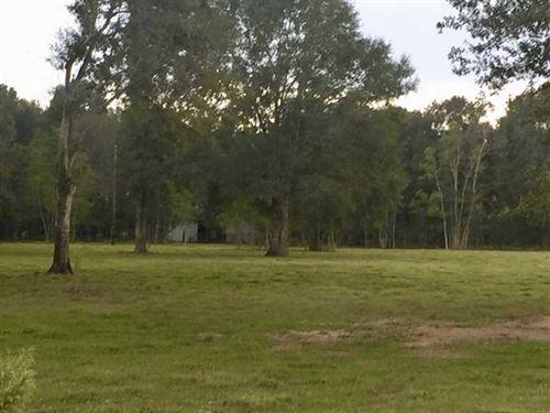 9.66 Acres Andrew Mouhot Road Trac : Ragley : Beauregard Parish : Louisiana