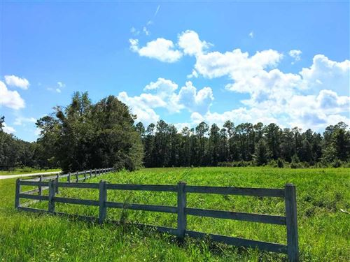 2.47 Acres Land For Sale Camden Co : Woodbine : Camden County : Georgia