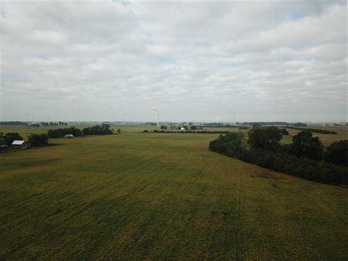 55 Acres of Farmland For Sale Elwo : Elwood : Madison County : Indiana