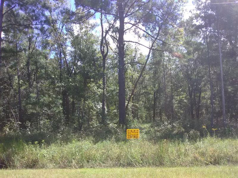 For Sale By Owner Florida >> Flagler Estates Mobiles Ok Finance Land For Sale By Owner Hastings Saint Johns County Florida