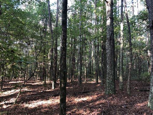 37.5+- Ac. Natural Pine & Hardwoods : Adairsville : Bartow County : Georgia
