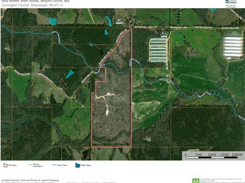 Land For Sale Mount Olive, Covingto : Mount Olive : Covington County : Mississippi