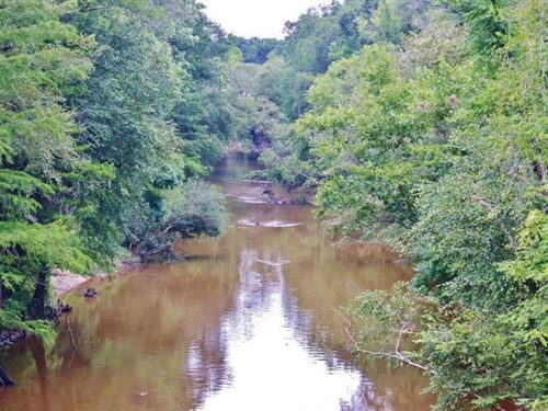 54 Acres Waterfront Timber Land : Buckatunna : Wayne County : Mississippi