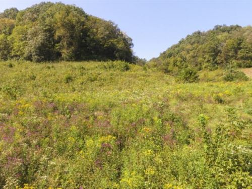 72.68 Ac, Creek, Pasture, Mtn Views : Whitleyville : Jackson County : Tennessee