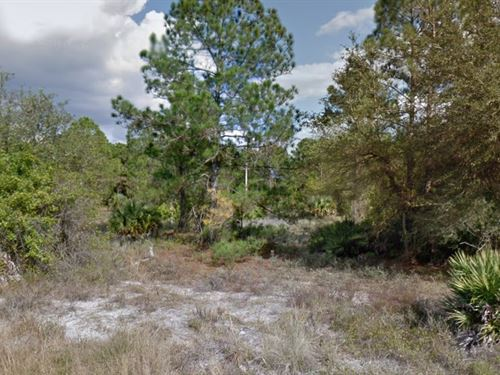 Lee County, Fl $50,000 Negotiable : Lehigh Acres : Lee County : Florida