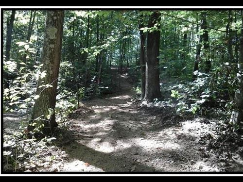 The Woods At Cohagen Tract 1 : Logan : Hocking County : Ohio