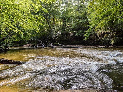 Wooded Acreage On South Tyger River : Roebuck : Spartanburg County : South Carolina