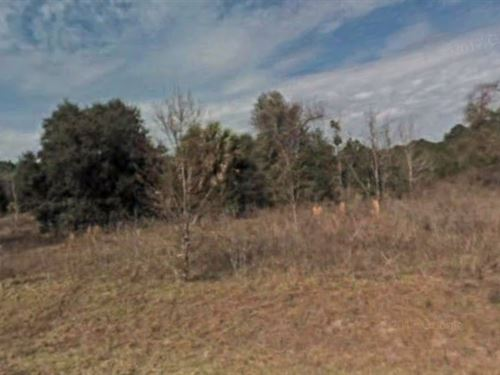 Marion County, Fl $299,999 Neg : Ocala : Marion County : Florida