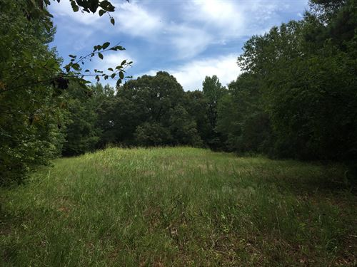 90+/- Acre, Farm With House : Donalds : Abbeville County : South Carolina